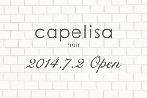 capelisa 2014.7.2 Open